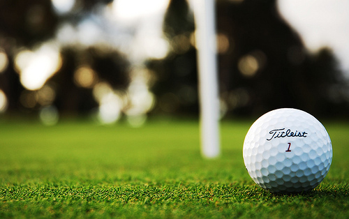 Golf Courses in Tampa Florida